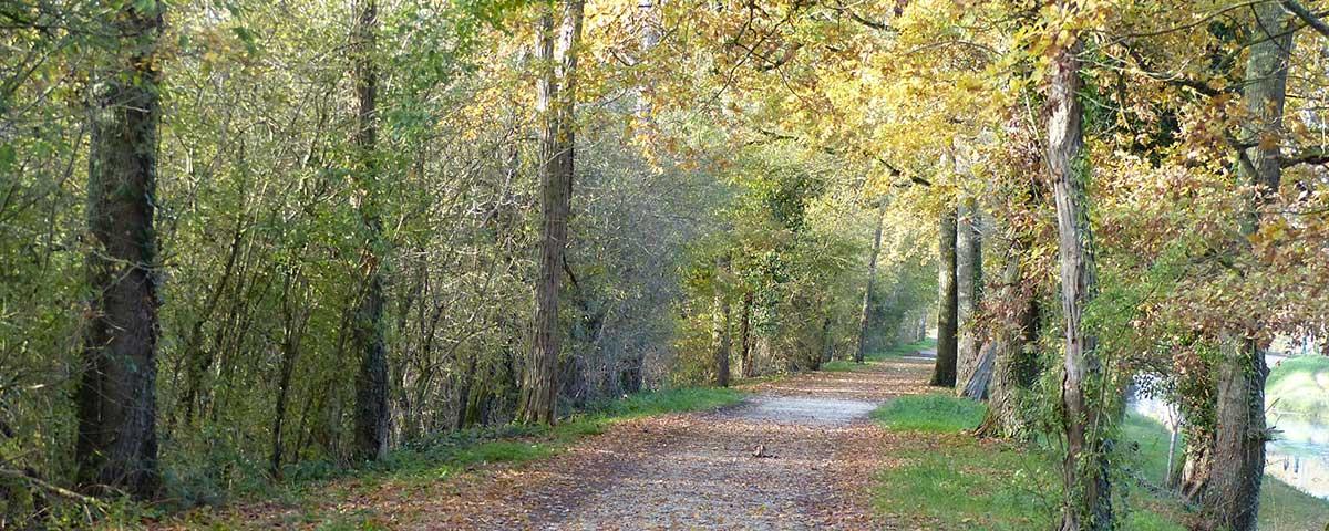 Location de Vélos Briare Pont canal
